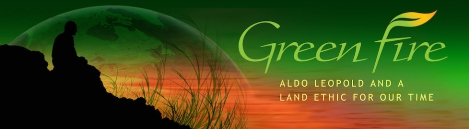 Green Fire logo