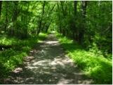 Winke - bike pathway