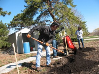 RUrbanPioneer gardeners and volunteers spread compost on the expanded garden on April 20th  (photo: L. Bryson)