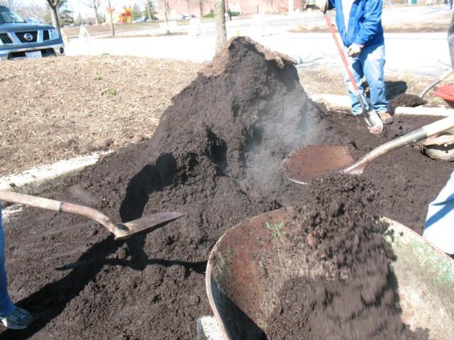 Soil Service 8