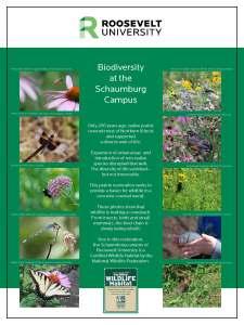 Sch Campus NWF Prairie_biodiversity_poster