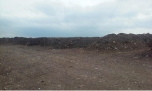 Massive piles at the WM large-scale compost site on Chicago's far South Side (A. McColgan, 2014)