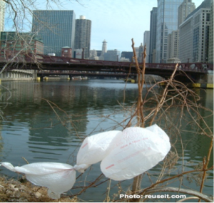 Plastic Bags Adorn Chicago River