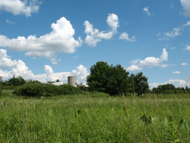 Spring Valley Nature Center, seen from the restored prairie (M. Bryson, 2011)